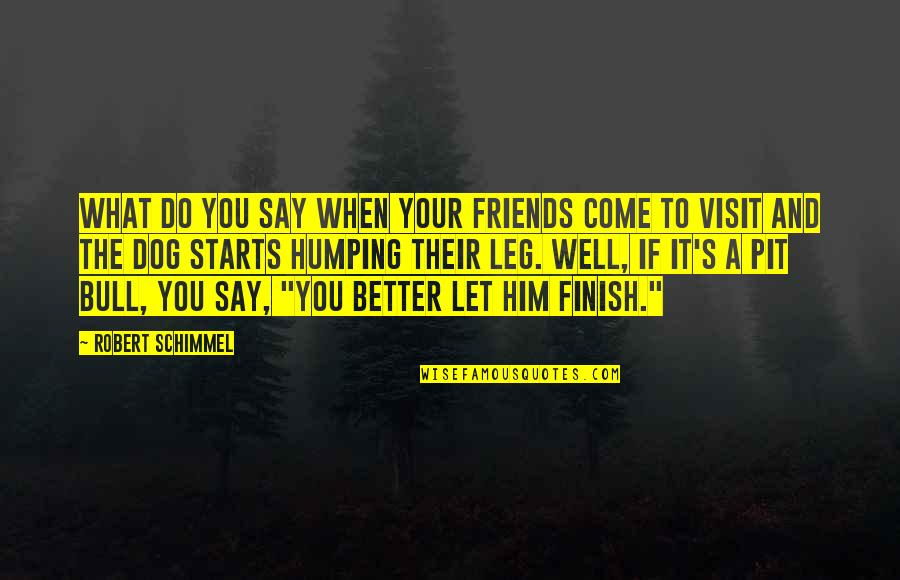 Let Him Come To You Quotes By Robert Schimmel: What do you say when your friends come