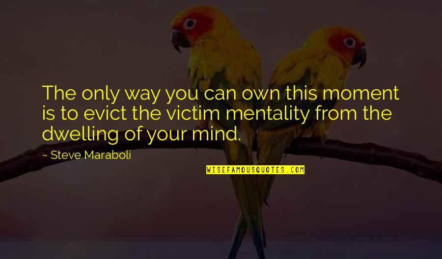 Let You Go Quotes By Steve Maraboli: The only way you can own this moment