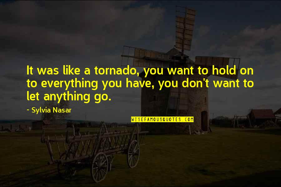 Let You Go Quotes By Sylvia Nasar: It was like a tornado, you want to