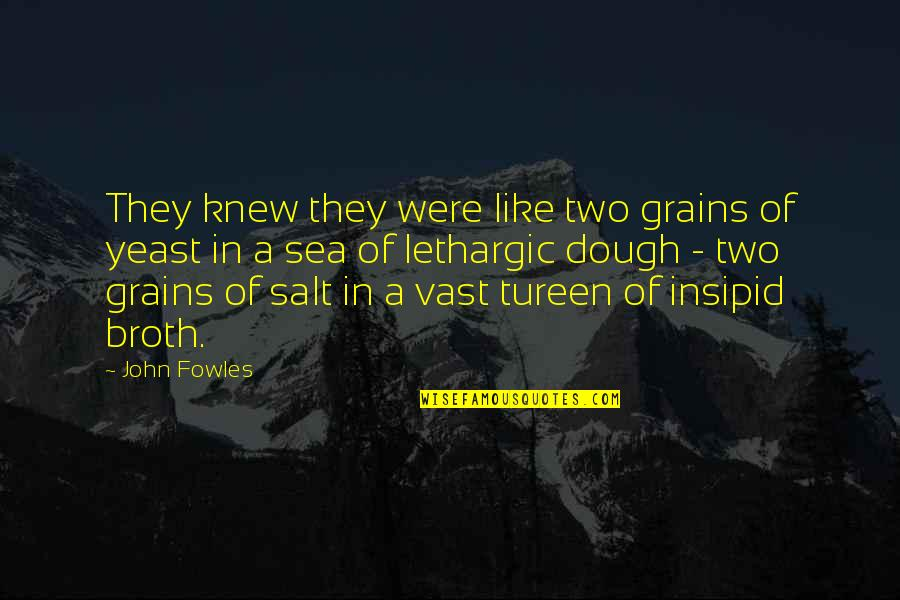 Lethargic Quotes By John Fowles: They knew they were like two grains of