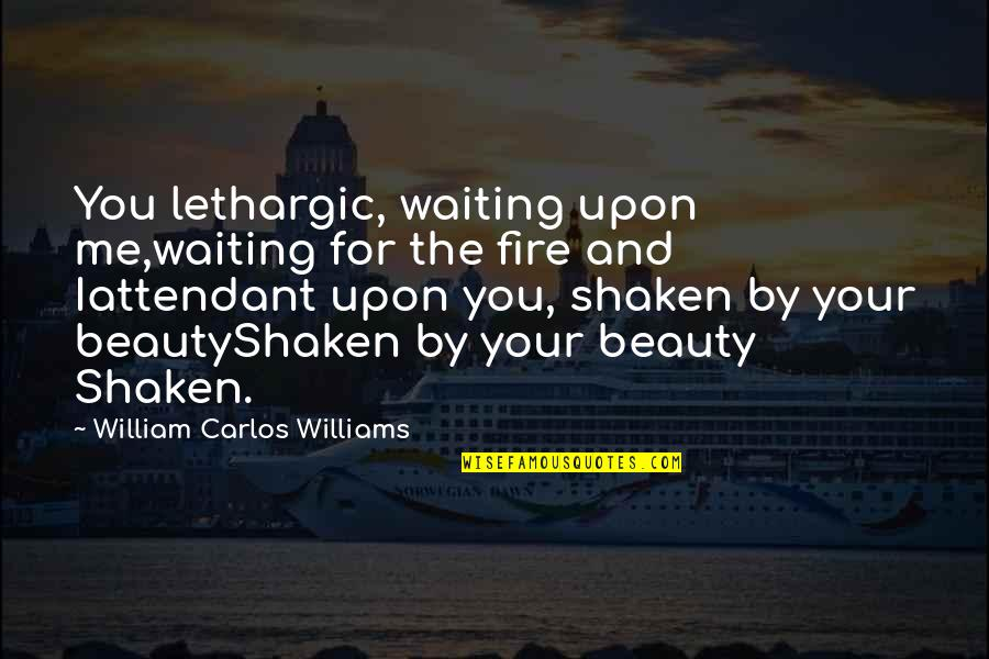 Lethargic Quotes By William Carlos Williams: You lethargic, waiting upon me,waiting for the fire