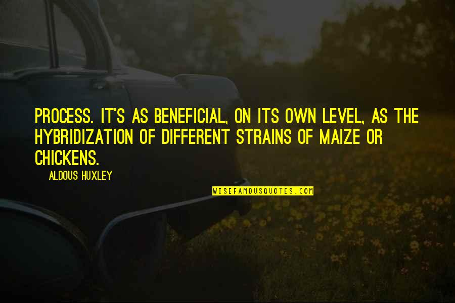 Level 1 2 3 Quotes By Aldous Huxley: Process. It's as beneficial, on its own level,
