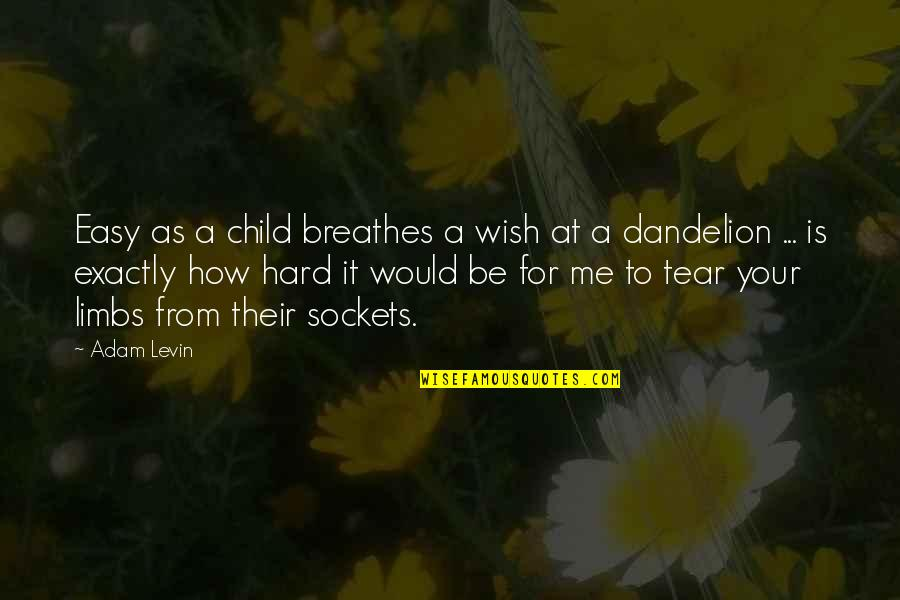 Levin's Quotes By Adam Levin: Easy as a child breathes a wish at
