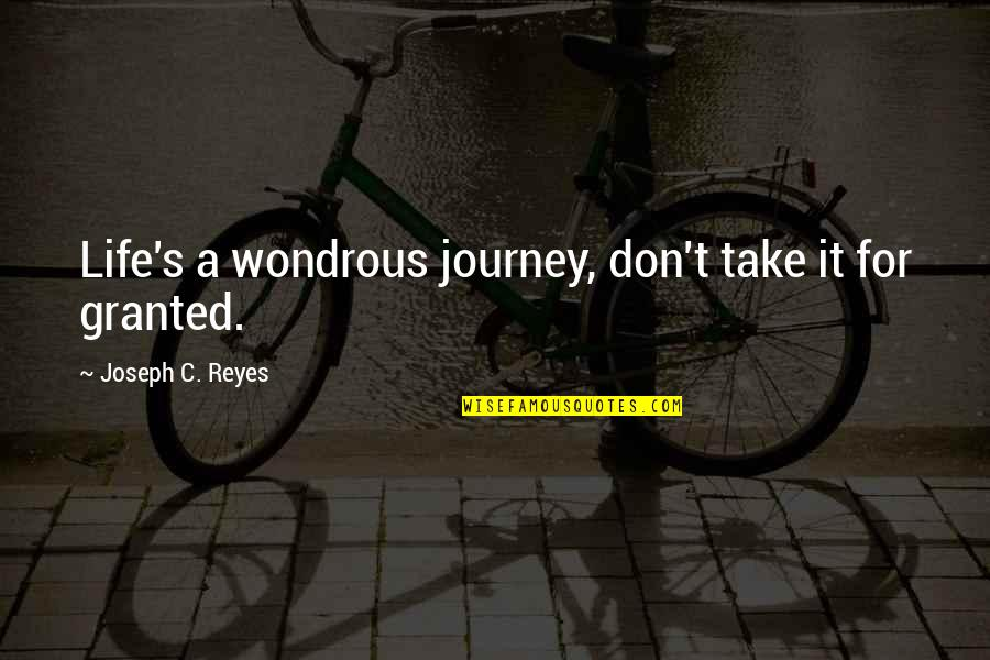 Lexa Kom Trikru Quotes By Joseph C. Reyes: Life's a wondrous journey, don't take it for