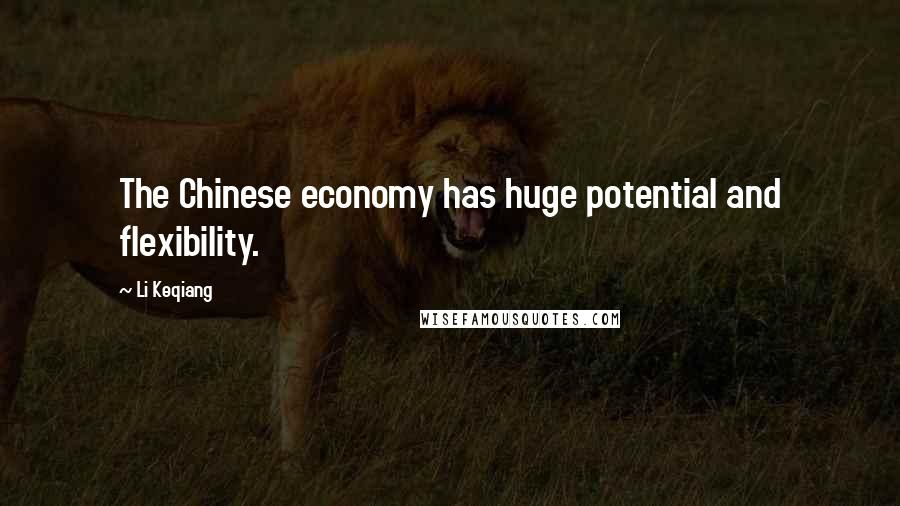 Li Keqiang quotes: The Chinese economy has huge potential and flexibility.