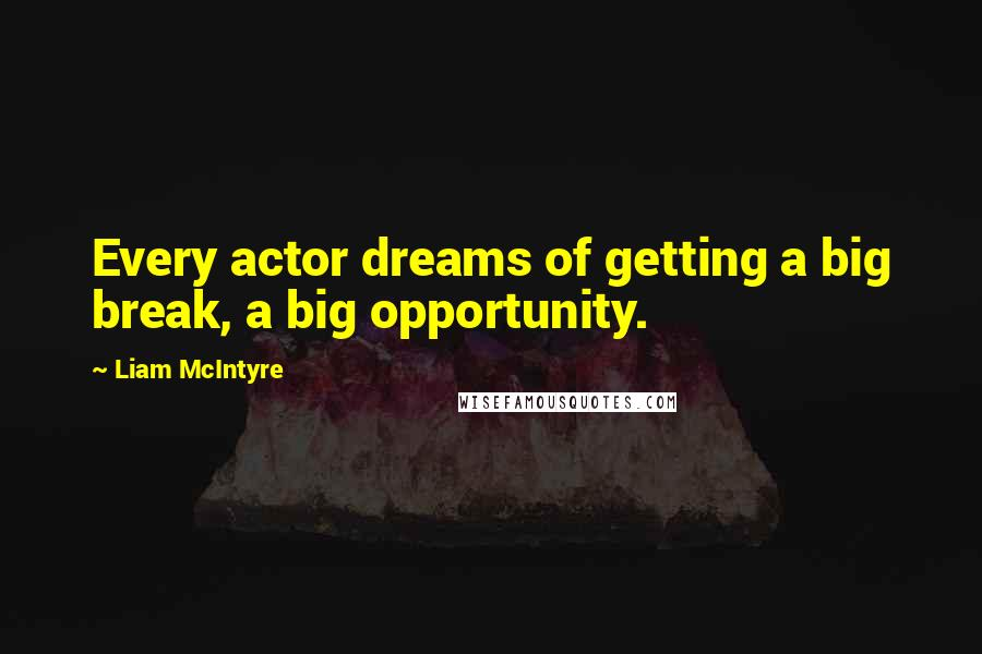 Liam McIntyre quotes: Every actor dreams of getting a big break, a big opportunity.