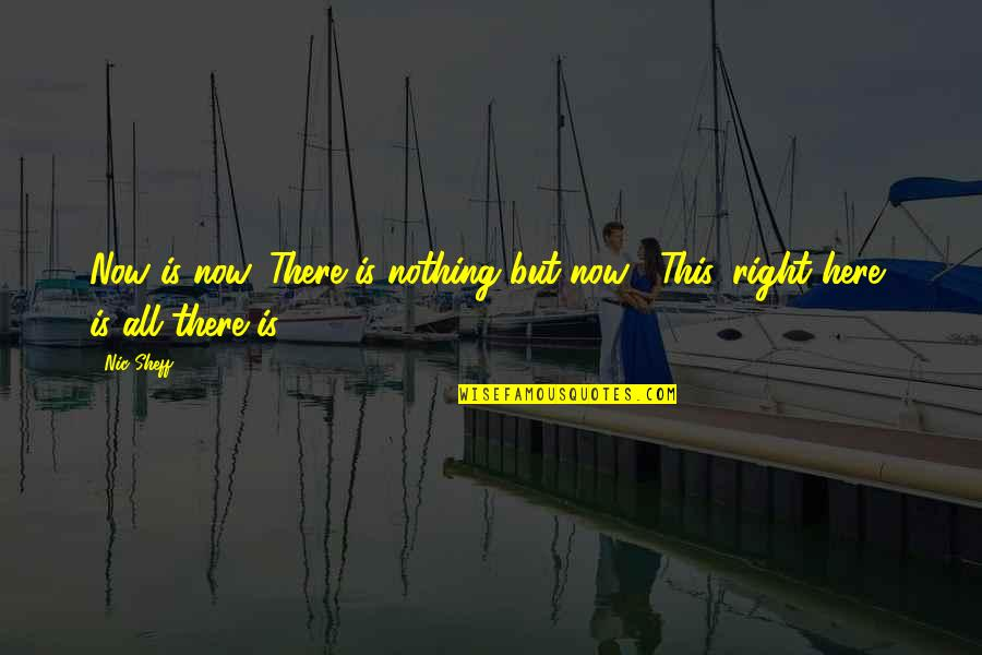 Liberalizes Quotes By Nic Sheff: Now is now. There is nothing but now...