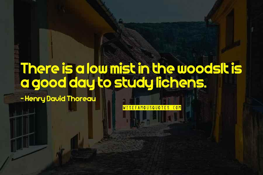 Lichens Quotes By Henry David Thoreau: There is a low mist in the woodsIt
