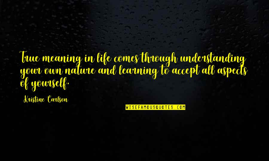 Life Accepting Quotes By Kristine Carlson: True meaning in life comes through understanding your