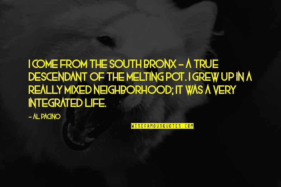 Life Al Pacino Quotes By Al Pacino: I come from the South Bronx - a