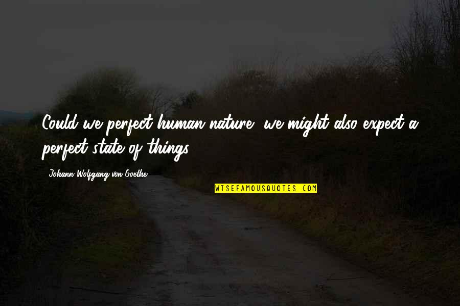 Life Al Pacino Quotes By Johann Wolfgang Von Goethe: Could we perfect human nature, we might also