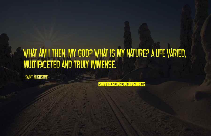 Life And Human Nature Quotes By Saint Augustine: What am I then, my God? What is