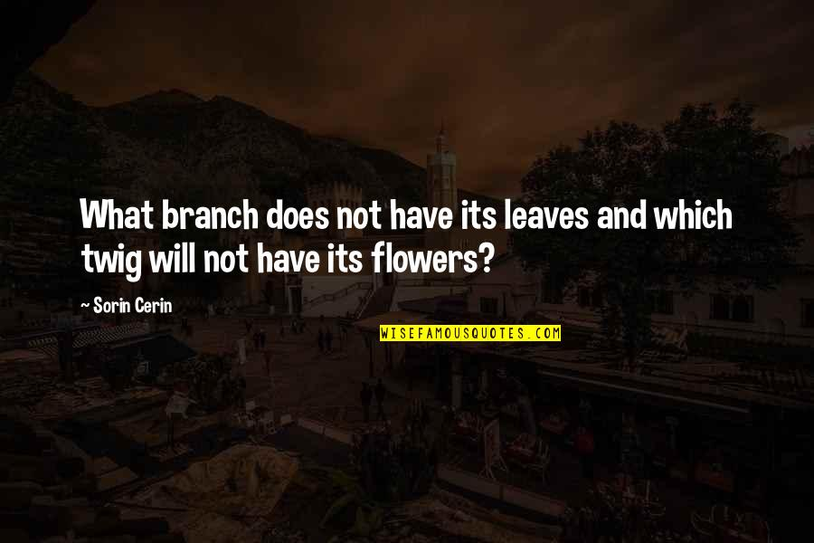 Life And Love And Death Quotes By Sorin Cerin: What branch does not have its leaves and