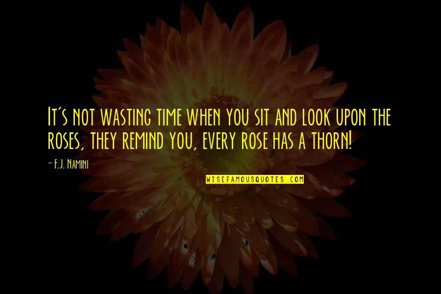 Life And Wasting Time Quotes By F.J. Namini: It's not wasting time when you sit and