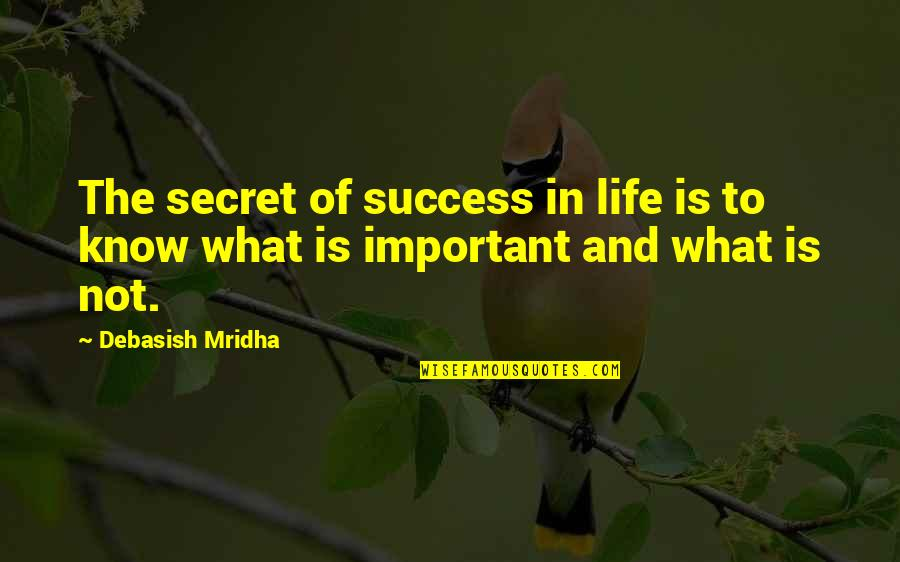 Life And What's Important Quotes By Debasish Mridha: The secret of success in life is to