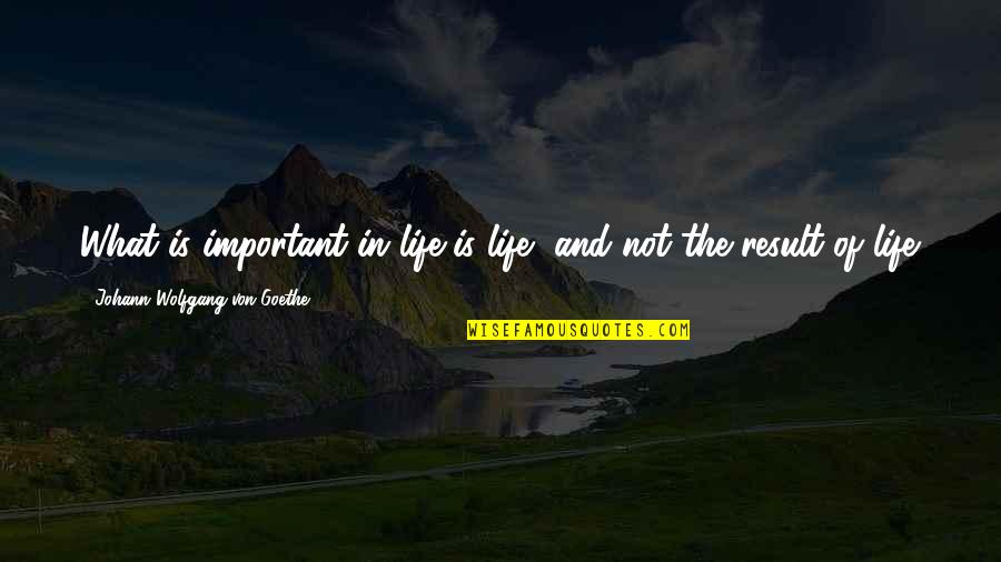 Life And What's Important Quotes By Johann Wolfgang Von Goethe: What is important in life is life, and