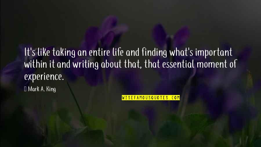 Life And What's Important Quotes By Mark A. King: It's like taking an entire life and finding