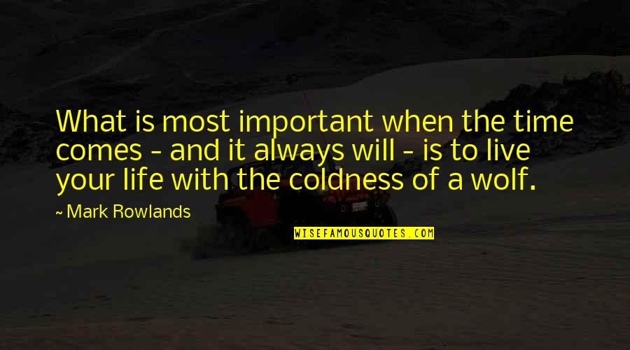 Life And What's Important Quotes By Mark Rowlands: What is most important when the time comes