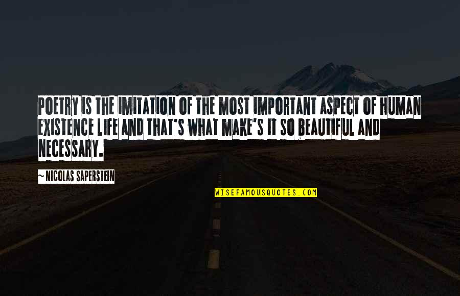 Life And What's Important Quotes By Nicolas Saperstein: Poetry is the imitation of the most important