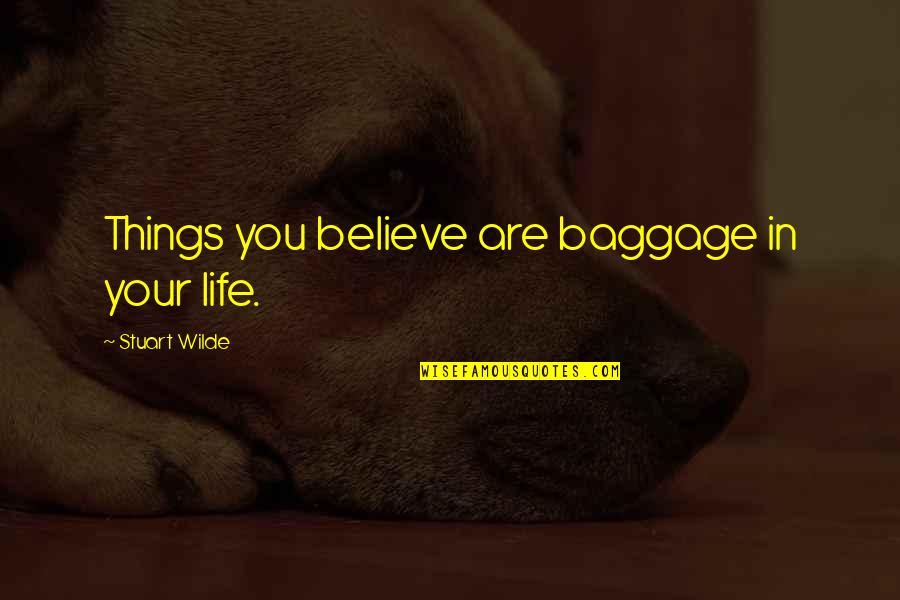 Life Baggage Quotes By Stuart Wilde: Things you believe are baggage in your life.