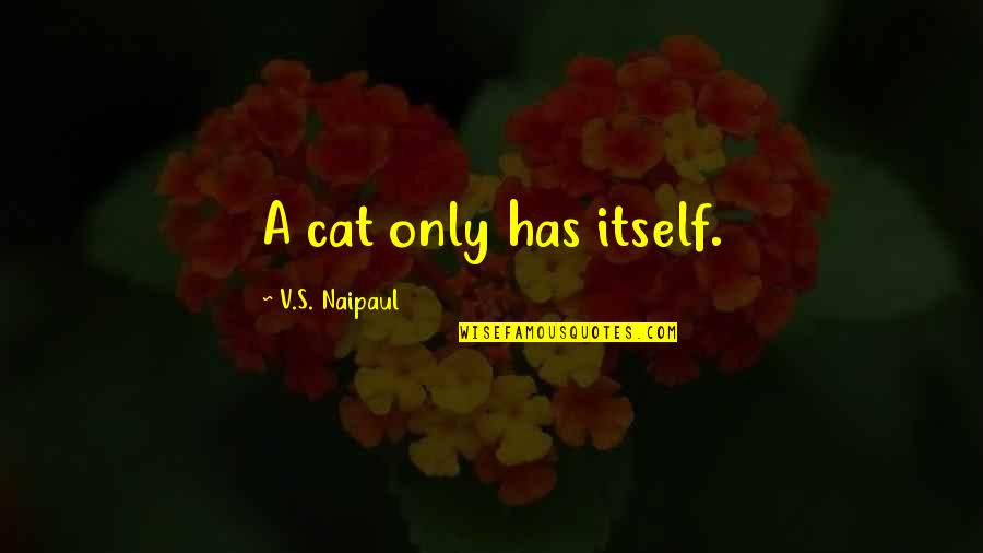 Life Compared To Flowers Quotes By V.S. Naipaul: A cat only has itself.