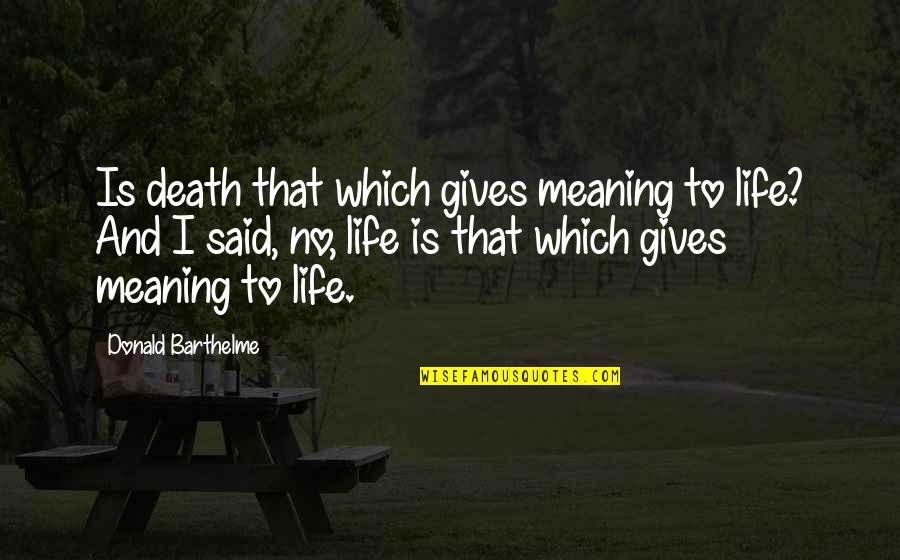 Life Death And Meaning Quotes By Donald Barthelme: Is death that which gives meaning to life?