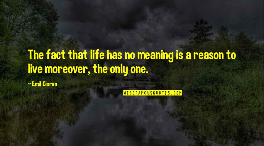 Life Death And Meaning Quotes By Emil Cioran: The fact that life has no meaning is