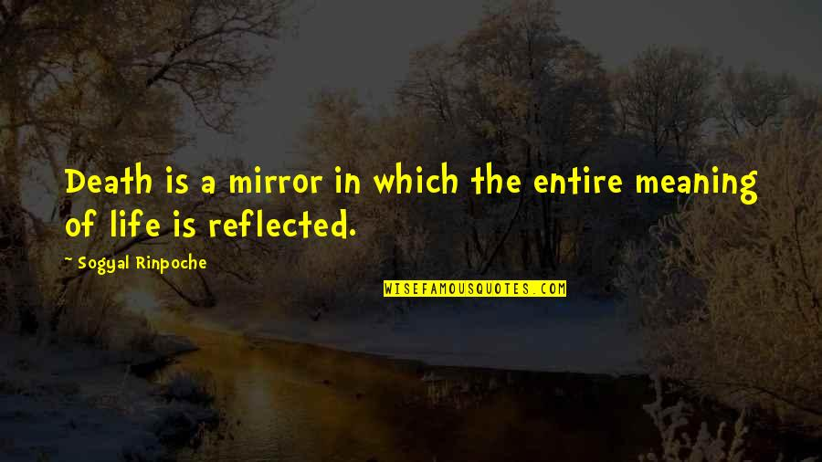 Life Death And Meaning Quotes By Sogyal Rinpoche: Death is a mirror in which the entire