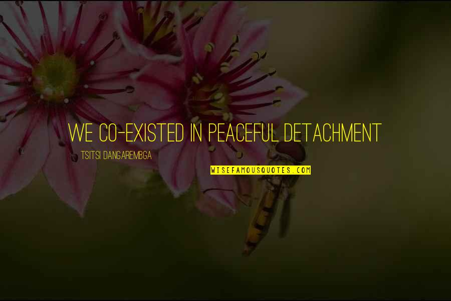 Life Drama Quotes By Tsitsi Dangarembga: We co-existed in peaceful detachment