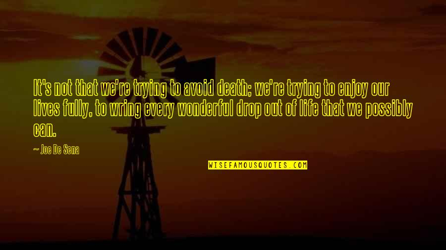 Life Drop Quotes By Joe De Sena: It's not that we're trying to avoid death;