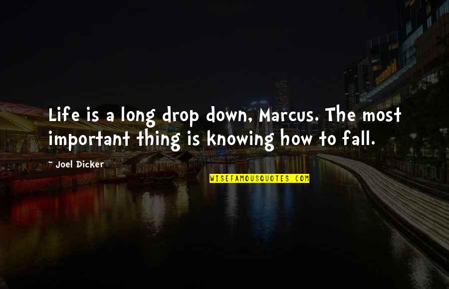 Life Drop Quotes By Joel Dicker: Life is a long drop down, Marcus. The
