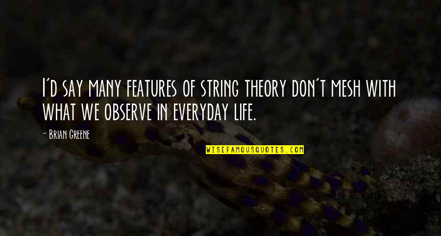 Life Everyday Quotes By Brian Greene: I'd say many features of string theory don't
