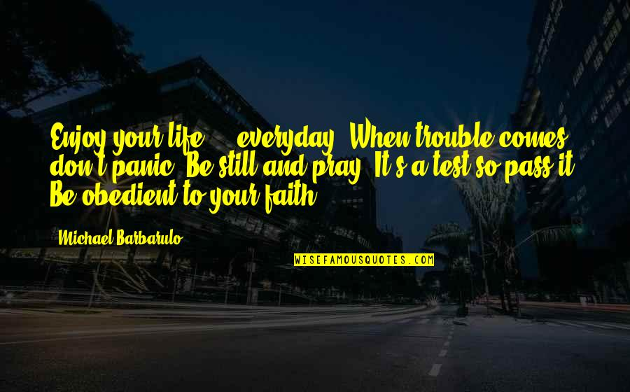 Life Everyday Quotes By Michael Barbarulo: Enjoy your life ... everyday. When trouble comes