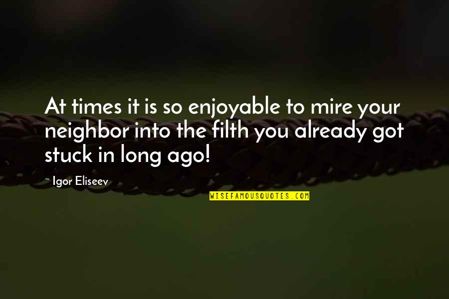 Life Experience Quotes By Igor Eliseev: At times it is so enjoyable to mire