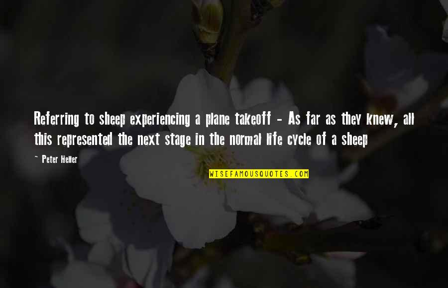 Life Experiencing Quotes By Peter Heller: Referring to sheep experiencing a plane takeoff -