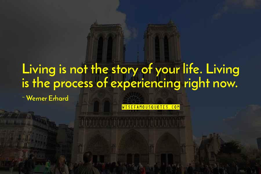 Life Experiencing Quotes By Werner Erhard: Living is not the story of your life.