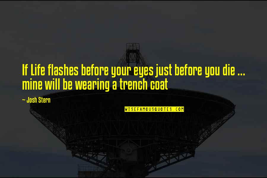 Life Flashes Quotes By Josh Stern: If Life flashes before your eyes just before