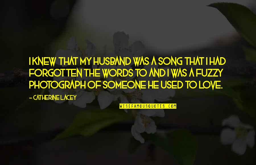 Life Fuzzy Quotes By Catherine Lacey: I knew that my husband was a song