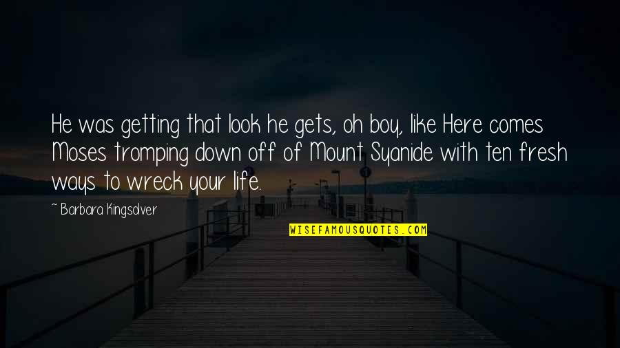 Life Gets You Down Quotes By Barbara Kingsolver: He was getting that look he gets, oh