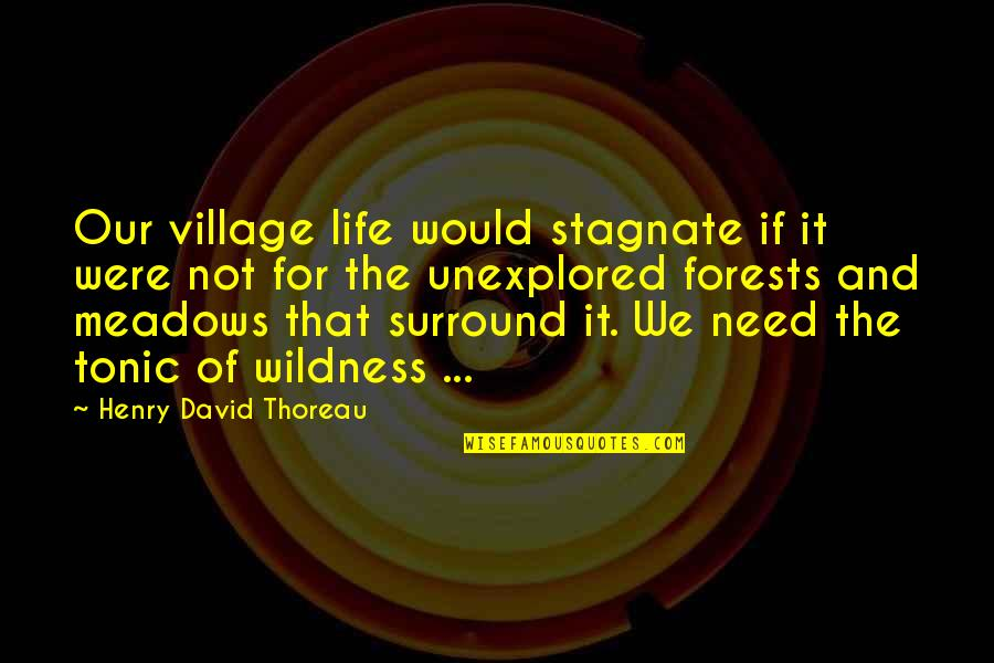 Life In A Village Quotes By Henry David Thoreau: Our village life would stagnate if it were