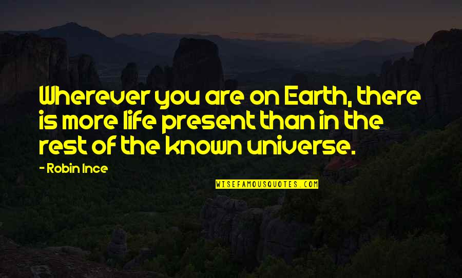 Life In The Universe Quotes By Robin Ince: Wherever you are on Earth, there is more