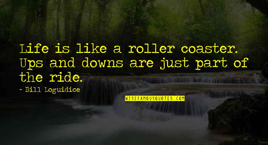 Life Is A Roller Coaster Ride Quotes Top 19 Famous Quotes About