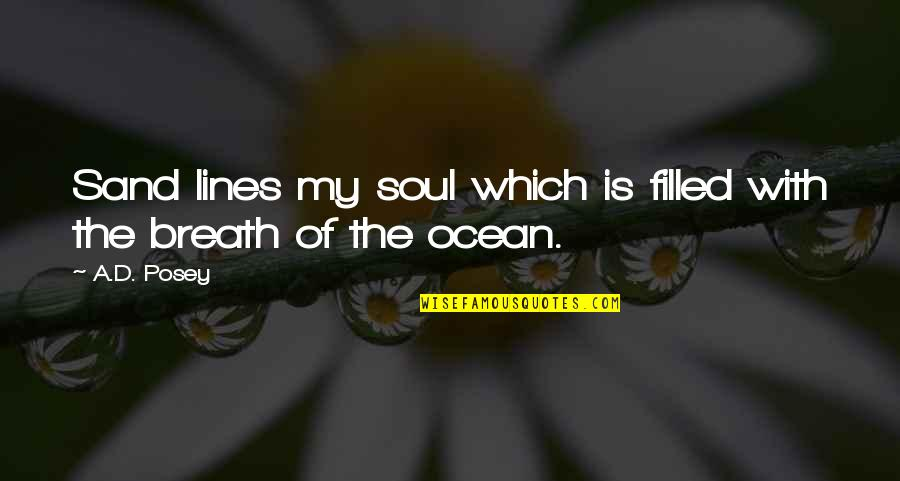 Life Is Filled With Quotes By A.D. Posey: Sand lines my soul which is filled with