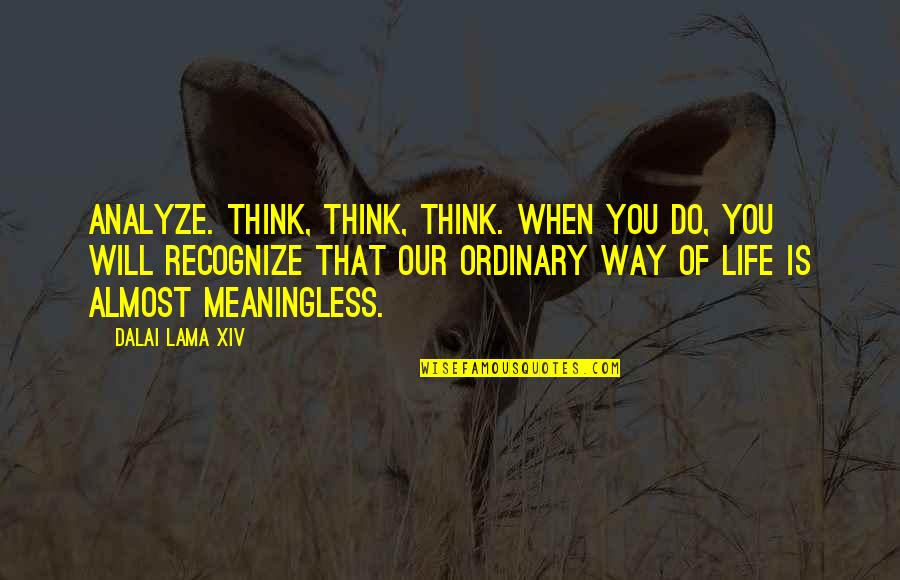Life Is Meaningless Without You Quotes By Dalai Lama XIV: Analyze. Think, think, think. When you do, you