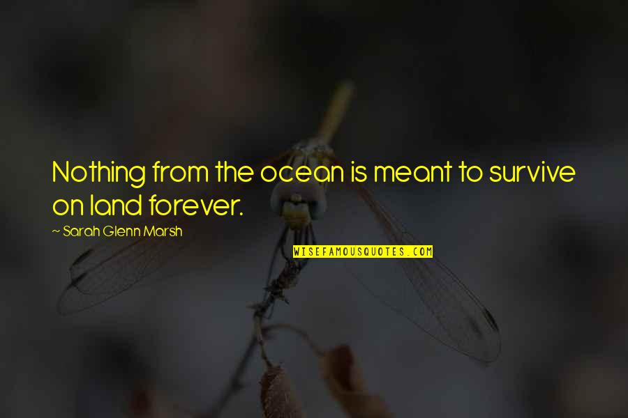 Life Is Nothing Without Love Quotes By Sarah Glenn Marsh: Nothing from the ocean is meant to survive
