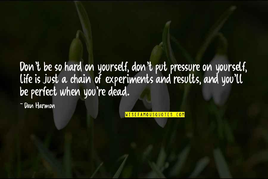 Life Is Perfect Now Quotes By Dan Harmon: Don't be so hard on yourself, don't put
