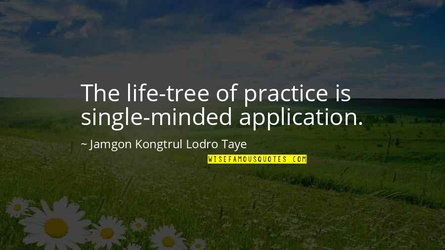 Life Is Perfect Now Quotes By Jamgon Kongtrul Lodro Taye: The life-tree of practice is single-minded application.