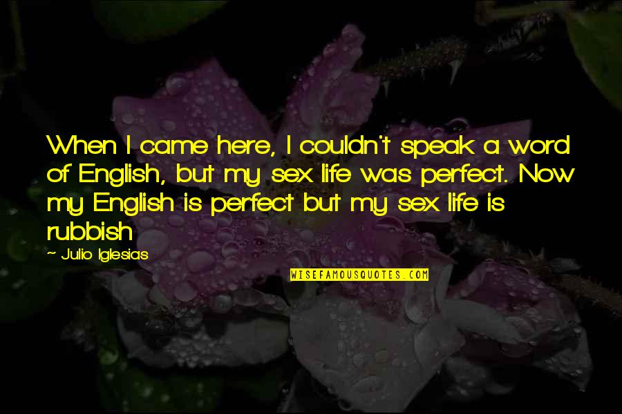 Life Is Perfect Now Quotes By Julio Iglesias: When I came here, I couldn't speak a