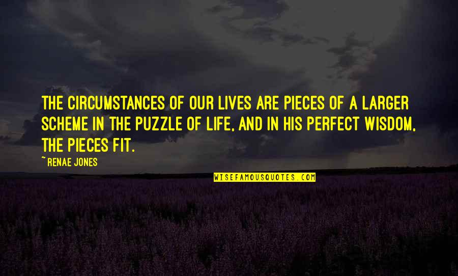 Life Is Perfect Now Quotes By Renae Jones: The circumstances of our lives are pieces of