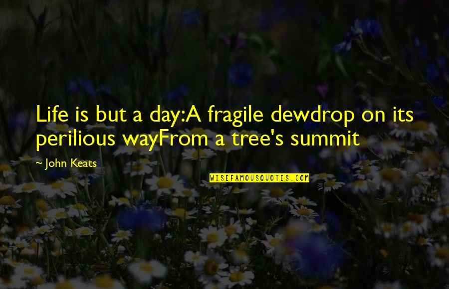 Life Is Too Fragile Quotes By John Keats: Life is but a day:A fragile dewdrop on